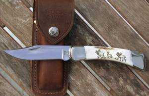 BUCK 110 Folding Hunter